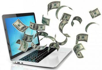 Las ganancias de ActionPay: opiniones, características y beneficios