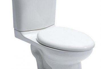 Wysokość WC: standardowe zasady. Toaleta dla osób niepełnosprawnych. Wymiary WC dla dzieci