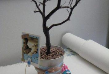 Jak tworzyć własne drzewo cukierków
