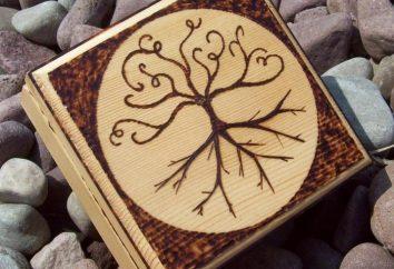 Skrzynka jest wykonana z kartonu z ich rąk: oryginalny i ładny pamiątkę