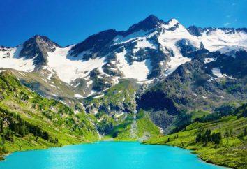 Międzynarodowy Dzień Mountain – święto jedności z naturą!