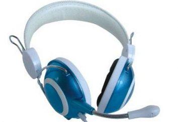Jak podłączyć zestaw słuchawkowy z mikrofonem do komputera za siebie?