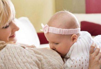 Puis-je bortsch mère de soins infirmiers? Les meilleures recettes et recommandations des professionnels