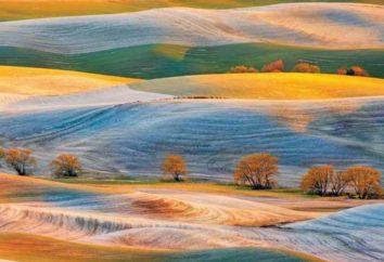 Ces superbes photos de National Geographic vous rappelleront combien notre monde est merveilleux