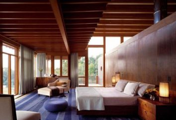 Camera da letto in una casa di legno: Punti culminanti di disegno