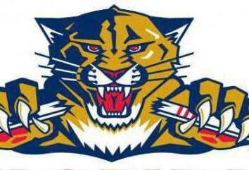 HC « Panthers de la Floride »: l'histoire de la formation et la gamme actuelle