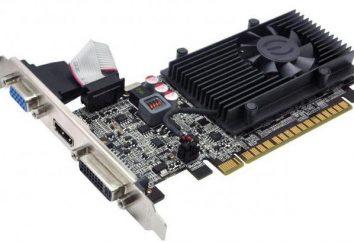 Karta graficzna NVidia GeForce GT 610: funkcje i akcelerator grafiki niszowych