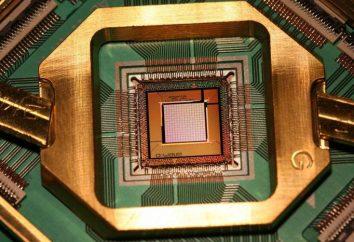 Quantum Procesor: opis, zasada działania