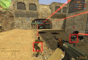 "Barare ""counter strike"", o come diventare un professionista"