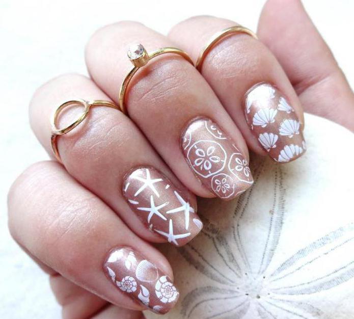 Diseño de uñas de Shell: características y foto