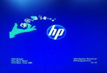 Jak umieścić w BIOS, aby uruchomić komputer z płyty. Jak włączyć bootowanie z płyty CD / DVD