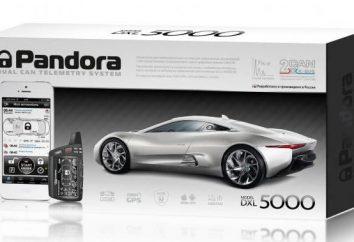 Alarma de coche Pandora 5000: instalación, precio, opiniones