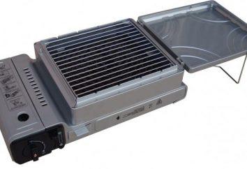 Quel est le meilleur et plus pratique grille pour griller: fonte ou acier inoxydable?
