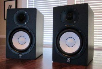 Studio moniteurs Yamaha HS50M: spécifications, photos et critiques