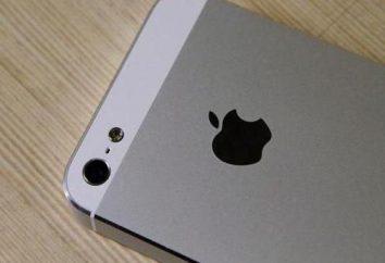 Como comprar un nuevo iPhone 5S en Ebay y en el mercado ruso?