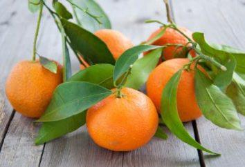 Mandarynka niż pożyteczne dla organizmu? Nasiona mandarynki: użyteczne właściwości