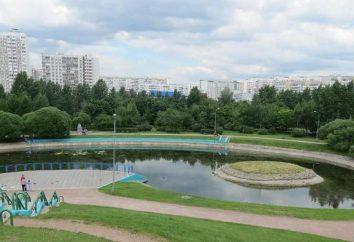 Bratislava Parco: descrizione e foto