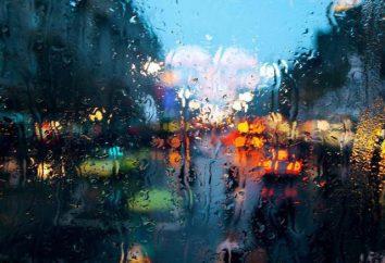 Épithète du mot « pluie »: comment choisir le plus approprié des nombreuses options