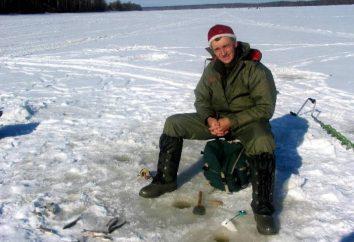 Attraper hiver gabarit de perche. La pêche d'hiver sur la rivière