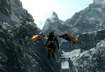 """Il gioco """"Skyrim"""": chi sono i Nephilim? Descrizione e caratteristiche di corsa"""
