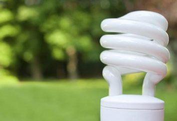 Pourquoi clignoter les ampoules d'économie d'énergie? Pourquoi fermer clignote économie d'énergie?