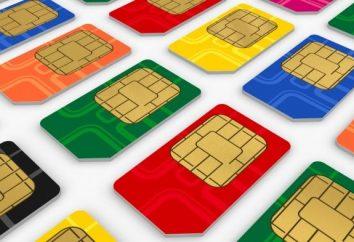 Szybka aktywacja karty SIM Beeline