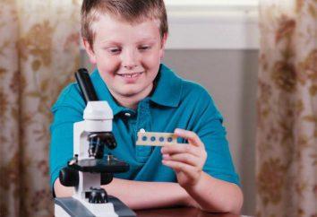 Come scegliere un microscopio per un ragazzo scolastico?