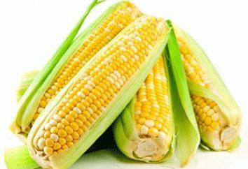 Comment faire cuire le maïs et de se protéger contre les fruits d'empoisonnement