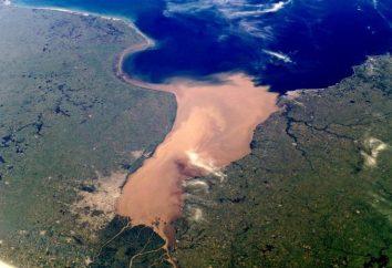 La Plata (Amérique du Sud): description, caractéristiques, photos