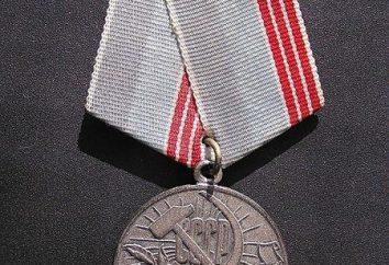 Veteran der Arbeit – eine Medaille für zivile Taten