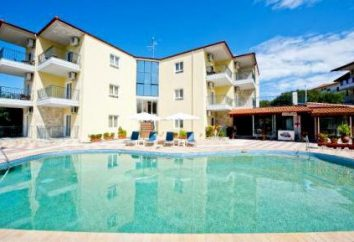 Ilios Hotel Ilios 3. Hotel (Halkidiki, Kreta) – zdjęcia, ceny i recenzje
