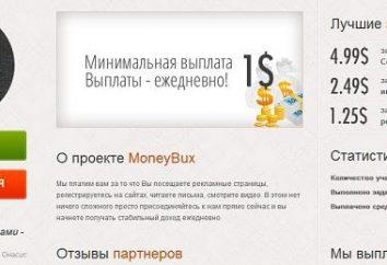 Tout à propos Moneybux: commentaires, caractéristiques, principe de fonctionnement