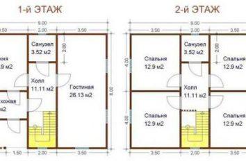 Casas de vigas 8h9: projetos e características de design