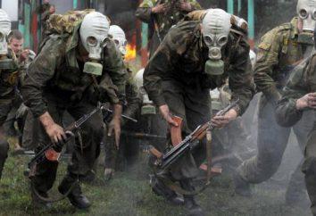 Forces spéciales du ministère de l'Intérieur: uniforme, armes, normes, formation
