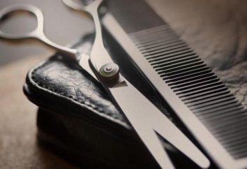 """""""Chop-Chop"""" (Moskau) Bewertungen der Friseurladen und über die Ausbildung, Adresse, Fotos"""
