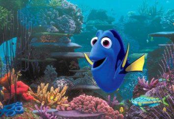 Fish-children: caratteristiche del segno zodiacale, natura e fatti interessanti