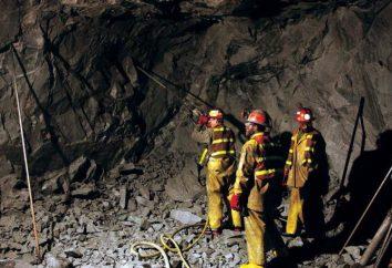 """""""Minería"""" (especialidad) que trabajan como profesionales en la demanda"""