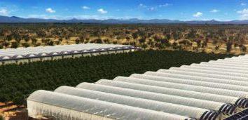 SERRES. l'agriculture à effet de serre plan d'affaires