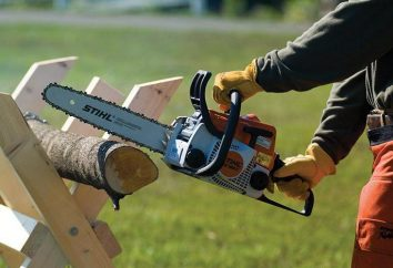 """Chainsaw """"Stihl 180"""": usterka i naprawa instrukcja"""