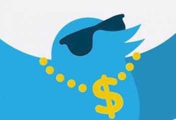 Como ganhar dinheiro na Como e repassar em redes sociais: dicas, sugestões e resultados