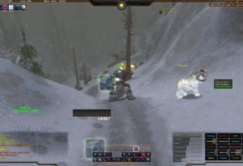 Il mondo di World of Warcraft: i migliori add-ons. Come installare mondo di WoW