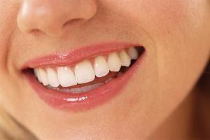 struttura del dente: sottigliezze anatomiche collegati per funzionare