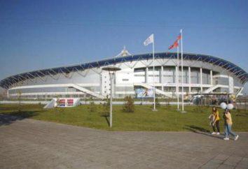 Palácio dos Esportes em Krylatskoye: localização, capacidade