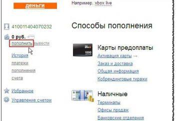 Où et comment reconstituer le « Yandex ». Comment remplir par le téléphone « Yandex »