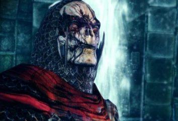 Passage von Dragon Age: Awakening – eine epische Ergänzung