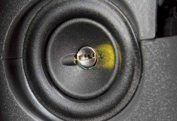 VAZ-2114, blokada zapłonu: metody rozwiązywania problemów i instalacji nowego urządzenia