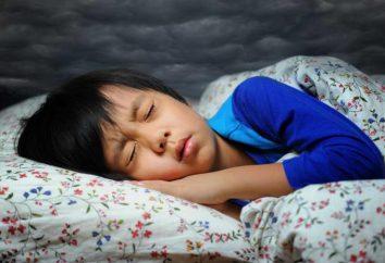Sfogliare il libro dei sogni: una visione della paura – questo è il punto?