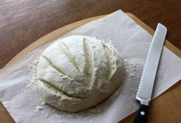 Comment faire la pâte à la levure pour les tartes magnifiques. recette de pâte pour gâteaux luxuriante
