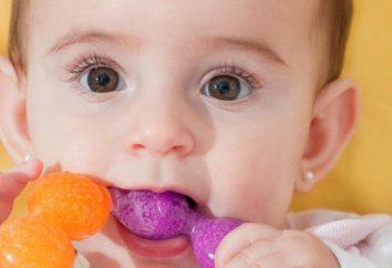 – le refroidissement des anneaux de dentition qui est mieux et comment choisir? A quel âge pour acheter la dentition des enfants?