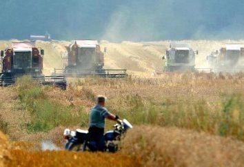 Combiner « Polésie » – une grande aide dans la récolte des céréales
